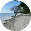 Achat immobilier Martinique